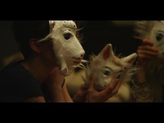 Visages portant des masques de chats