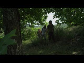 Trois personnes marchent au milieu d'une forêt