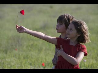 Un petit garçon et une petite fille tenant un coquelicot devant eux