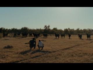 Photo du film Un monde sans bêtes