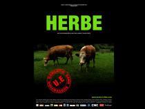 """Affiche """"Herbe"""" représentant deux vaches qui broutent"""