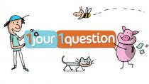 1 jour, 1 question - © anoki Le-loKal - Milan Presse