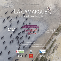 La Camargue, un radeau fragile - © Les Films du Sud