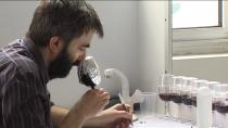 Homme sentant un verre de vin noir recouvert d'aluminium